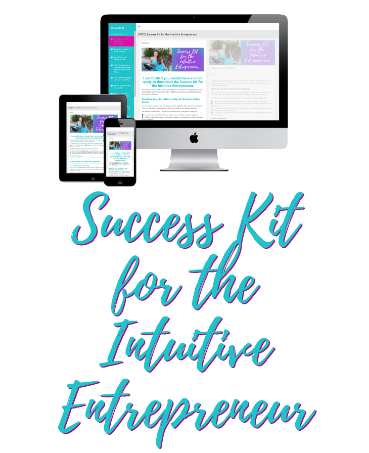 Success Kit for Intuitive Entrepreneur - Transparent